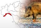 riapre la caccia in Liguria