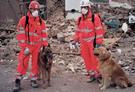 Unità cinofile terremoto