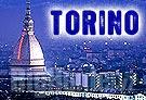 Torino contro la caccia selvaggia