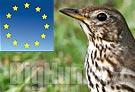 La caccia in Italia è conforme alle norme UE