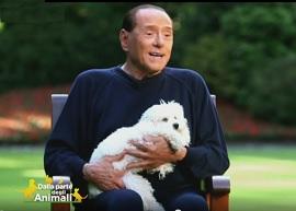 Berlusconi Dudù