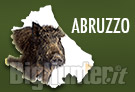 Abruzzo ungulati